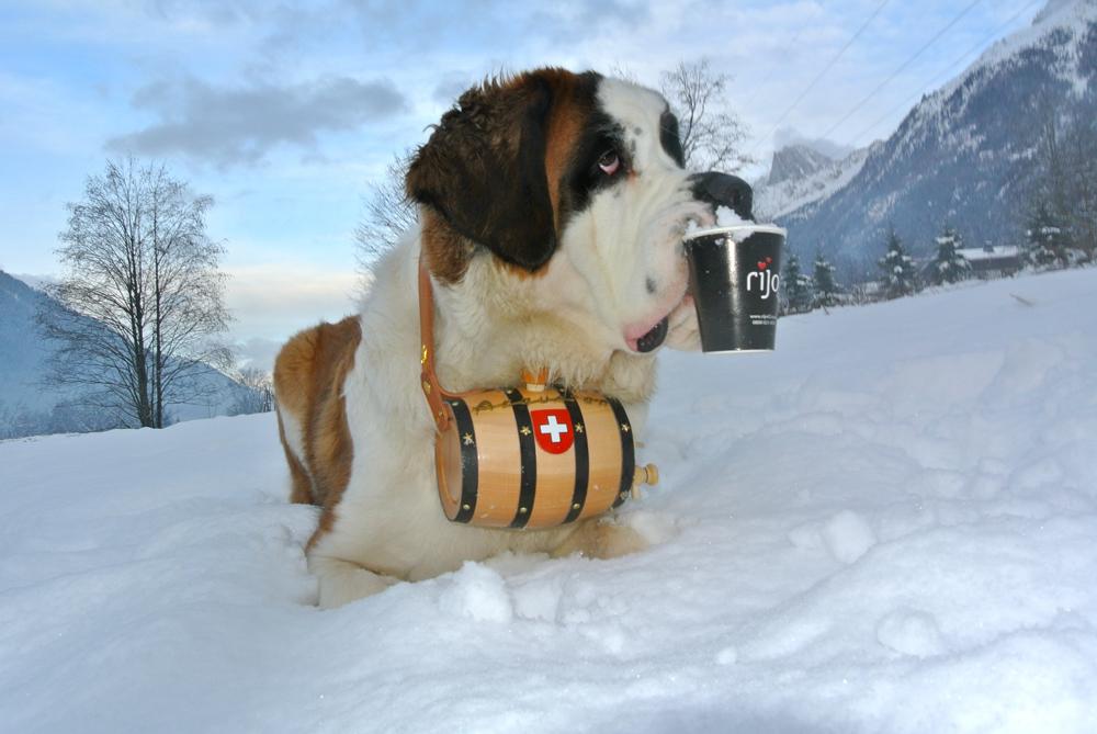 Apache Swiss Alps